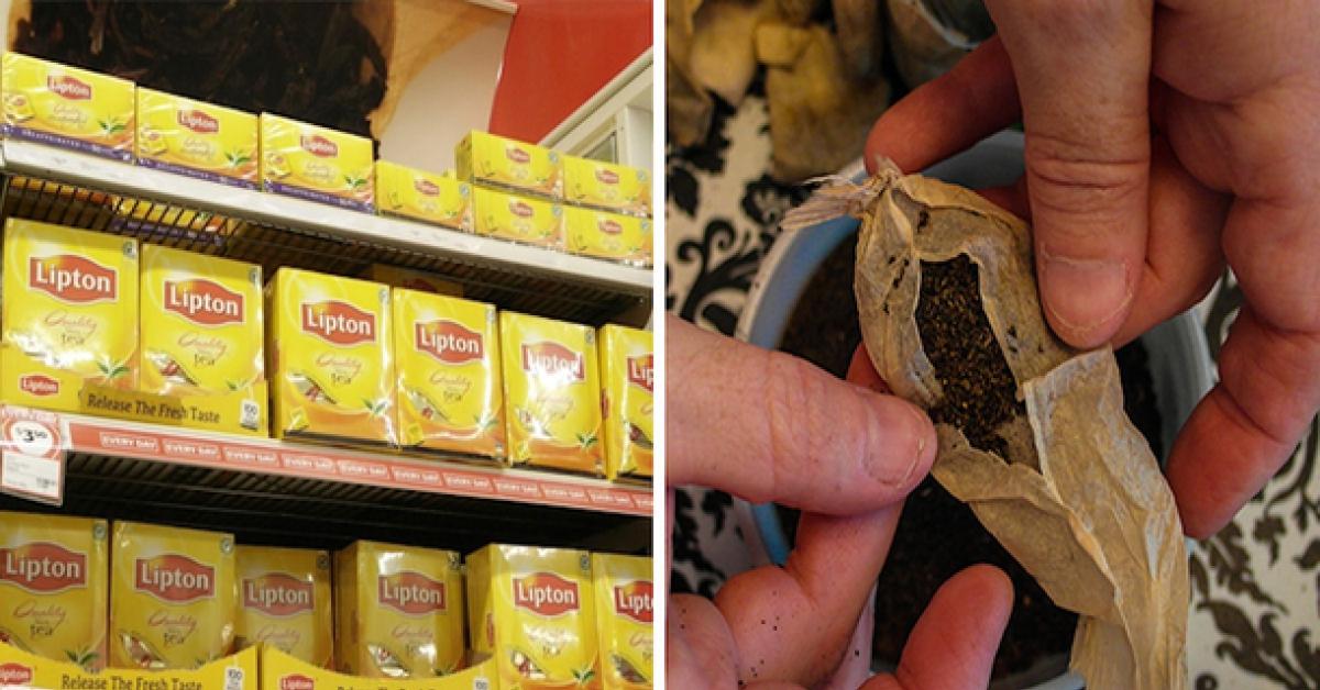 Większość popularnych herbat zawiera niedozwolone ilości pestycydów. Uważaj!
