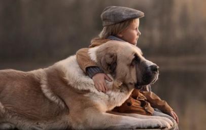 Rewolucyjne badania pokazują, że posiadanie psa wydłuża nam życie i chroni przed chorobami