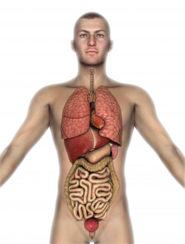 Domowy sposób na sprawdzenie obecności toksyn w organizmie. Pomaga także schudnąć