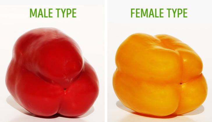 7 cennych rad dotyczących wyboru smacznych warzyw i owoców. Już nigdy nie dasz się nabrać