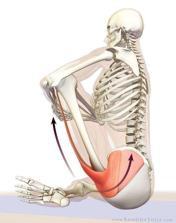 Zespół mięśnia gruszkowatego jest mylony z atakiem rwy kulszowej. Objawy są niemal identyczne