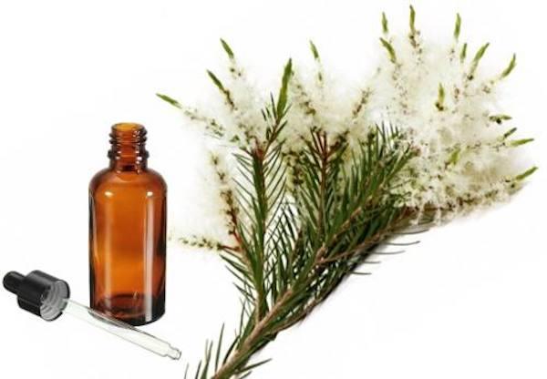 skutki uboczne olejku z drzewa herbacianego
