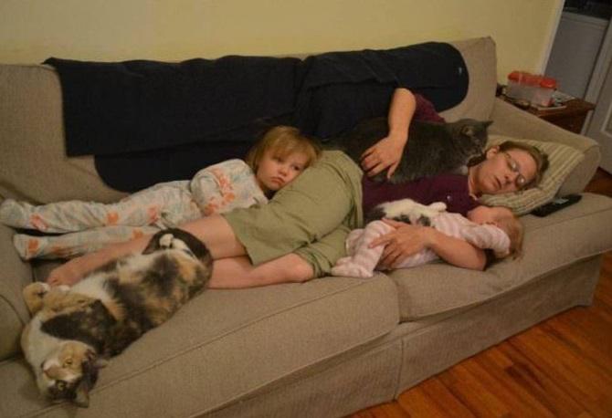 15 zdjęć śpiochów, których sen zaskoczył w wyjątkowo niefortunnym momencie
