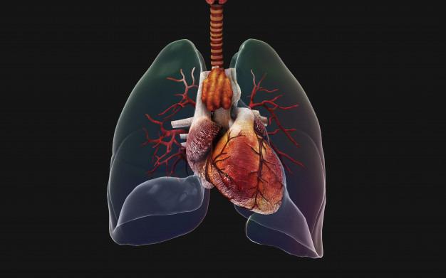 przeszczep płuc u 70-latka