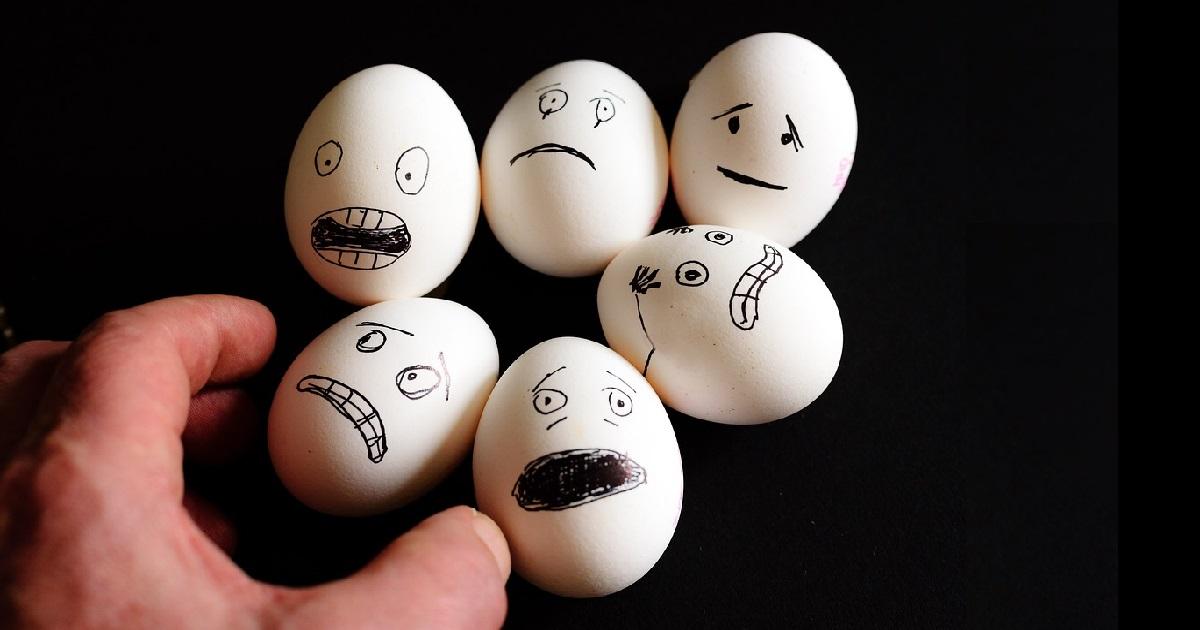 tego o jajkach nie wiedziałeś